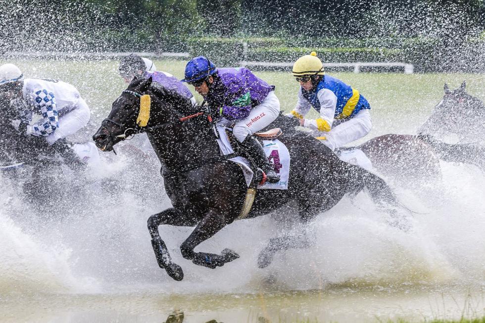 Gonitwy przeszkodowe wracają na Partynice – 24 czerwca odbędzie się drugi dzień wyścigowy